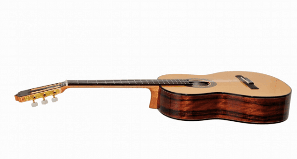 What kind of guitar is it good to buy?